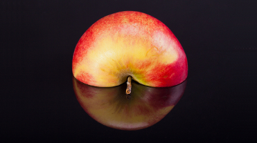 Half red apple with reflection